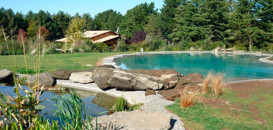 Algumas das vantagens e desvantagens em uma piscina for Piscinas biologicas